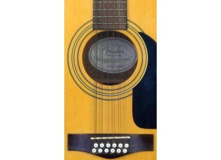 Fender DG10/12