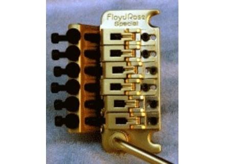 Floyd Rose Special