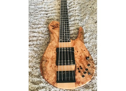 Fodera Guitars Matthew Garisson signature