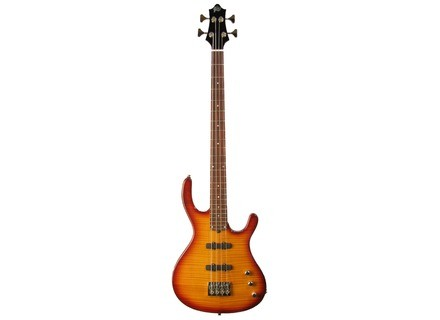 Gadow Guitars Custom Bass