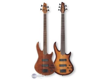 Godin BG Bass
