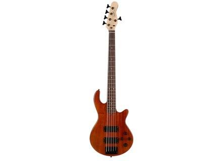 Godin Freeway 5 Bass Active