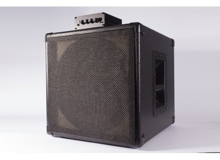 Guitar Sound Systems Single12c