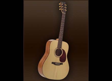 Guitares Boucher Genuine Natural Goose Dreadnought - Natural