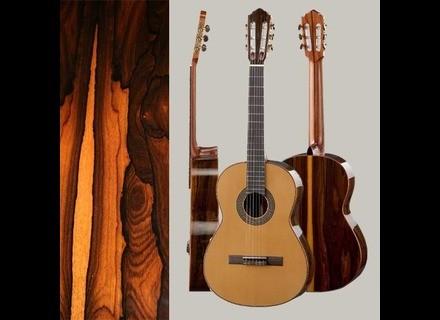 Hofner Guitars HZ 28