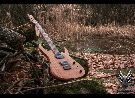 Hufschmid Guitars H6E