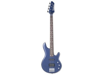 Ibanez RD300