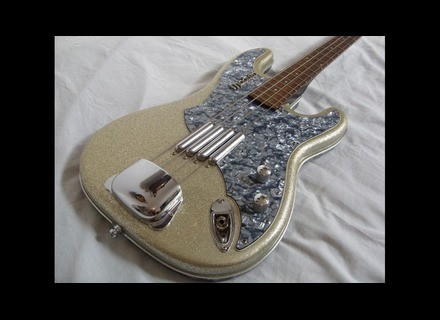 Italia Guitars Modulo