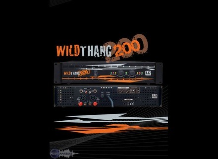 LD Systems Wildthang 200