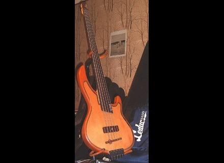 Leduc U-Bass 5 cordes fretless