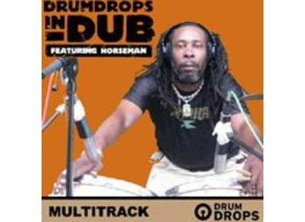 Loopmasters Drumdrops in Dub Multitrack