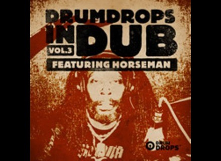 Loopmasters Drumdrops In Dub Vol. 3
