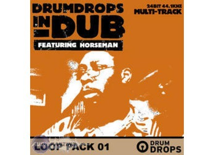 Loopmasters Drumdrops in Dub Volume 2