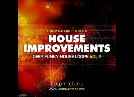 Loopmasters House Improvements 2