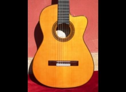 Miguel Ángel Bellido guitare flamenca