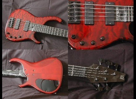 Modulus Guitars Quantum 5