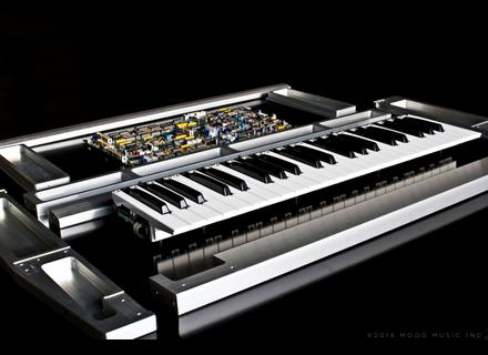 Moog Music Minimoog Voyager Ltd 2014