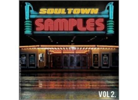 Motion Samples SoulTown Samples Vol. 2