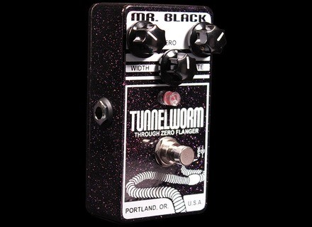 Mr. Black Tunnelworm