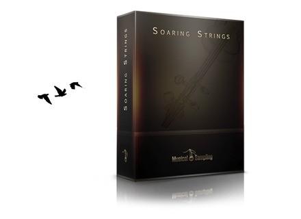 Musical Sampling Soaring String