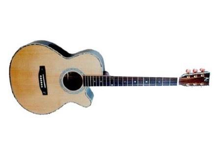 Nash Acoustic Guitar N20CEQ