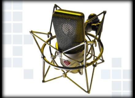 Neumann TLM 103 MT Mono set