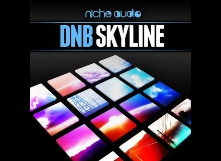 Niche Audio DnB Skyline