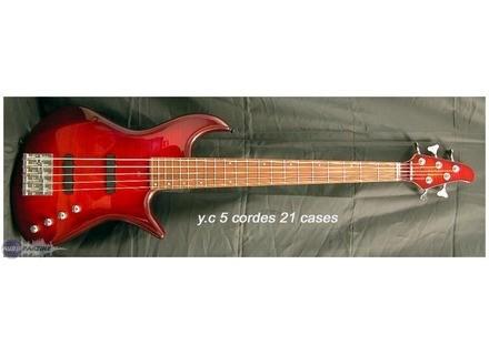 Noguera YC 5 21 Frets