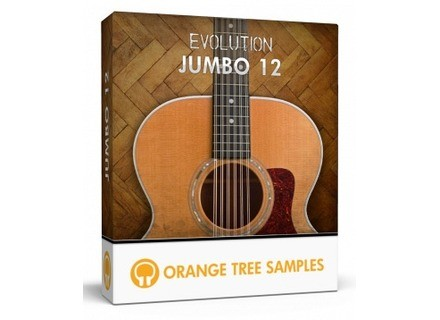 Orange Tree Samples Evolution Jumbo 12