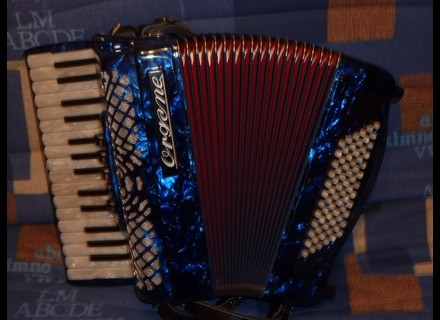 Organe Lady