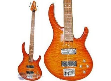 Peavey Dyna Bass FT