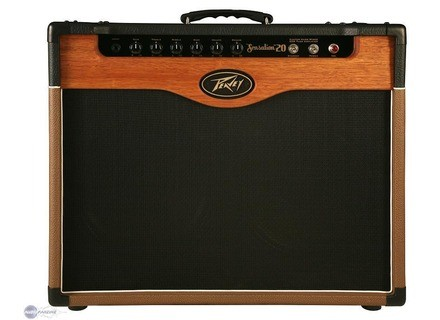 Peavey Custom Shop
