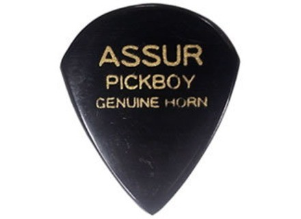PickBoy ASSUR PICK GP-AS/1