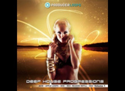 Producer Loops Deep House Progressions Vol 1
