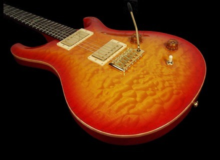 PRS Custom 22 Birds Artist Package