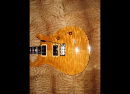 PRS Custom 24 Ten Top Birds
