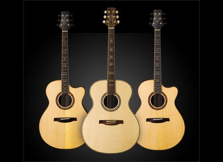 PRS Private Acoustic Stock Line
