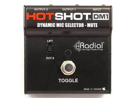 Radial Engineering HotShot DM1