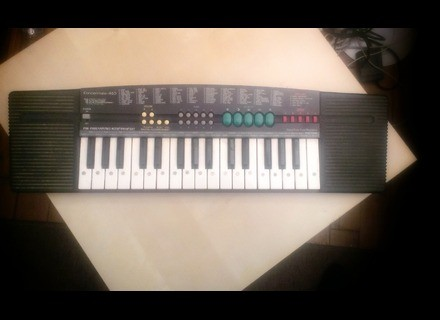 Realistic Concertmate-460