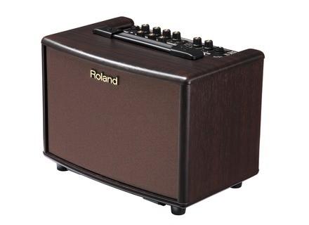 Roland AC-33-RW