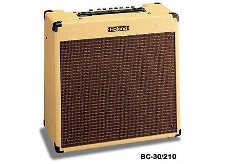 Roland Blues Cube BC-30 210