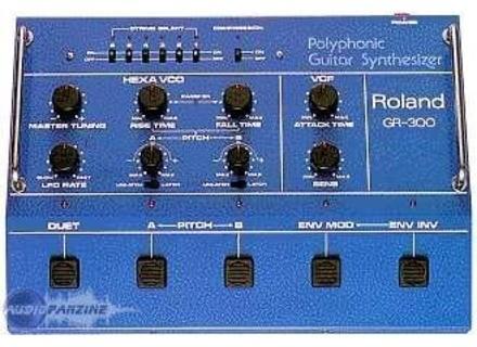 Roland GR-300