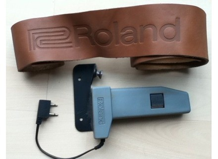 Roland MGS-1