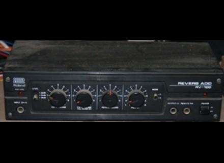 Roland RV 100
