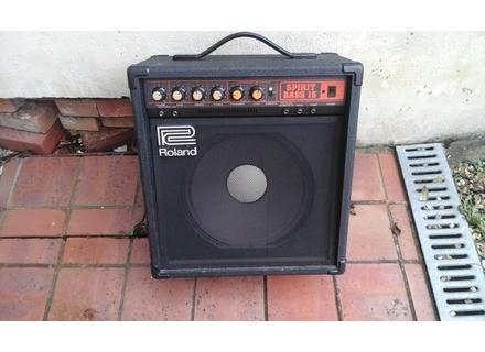 Roland Spirit Bass 15