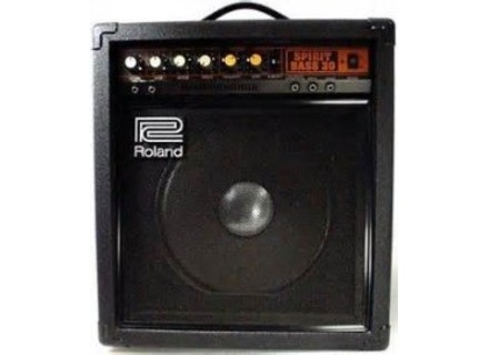 Roland Spirit Bass 30