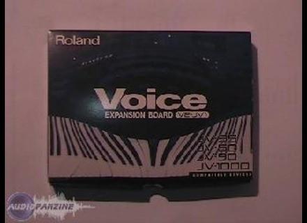 Roland JV