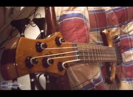 Roscoe Guitars LG 3005