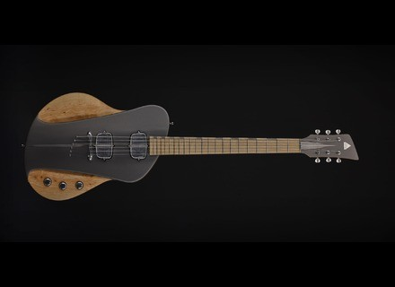 Sauvage Guitars One-Piece Master I
