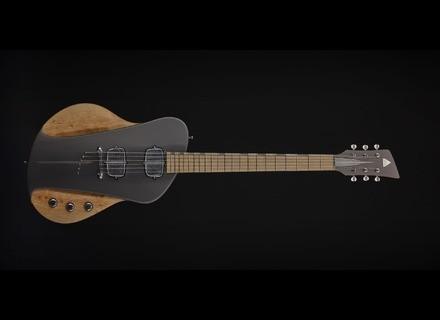 Sauvage Guitars One-Piece Master I